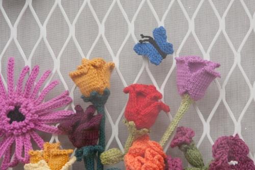 butterfly knit window s